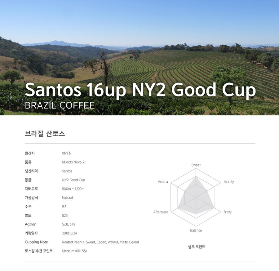Brazil_Santos16upNY2GC