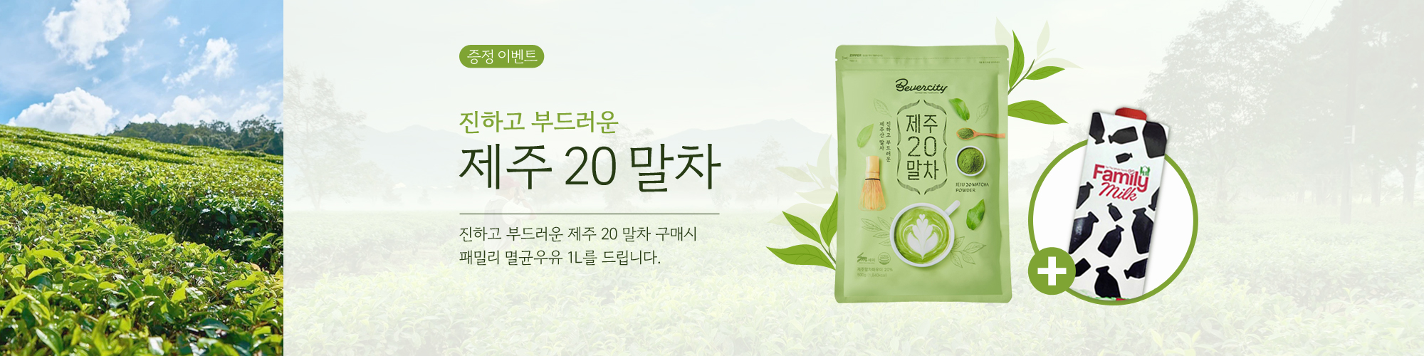 Jeju20Matcha_gift_2000